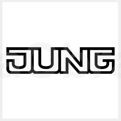 Jung mecanismos