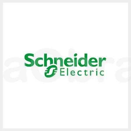 Eunea mecanismos Schneider