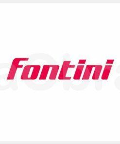 Mecanismos Fontini